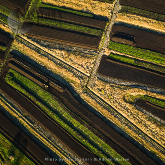Peat Extraction Sites, Ham Wall, The Somerset Levels, England