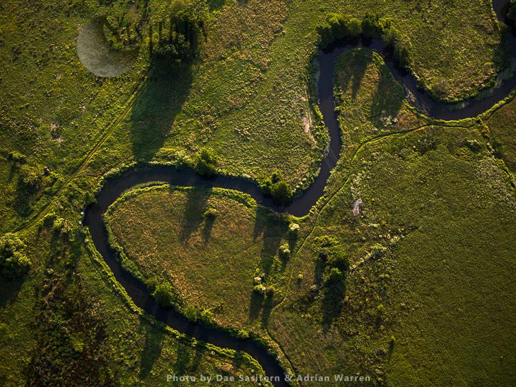 River Wey, near Pyrford , Surrey