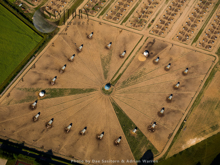 Pig Farming Near Newbury, Berkshire