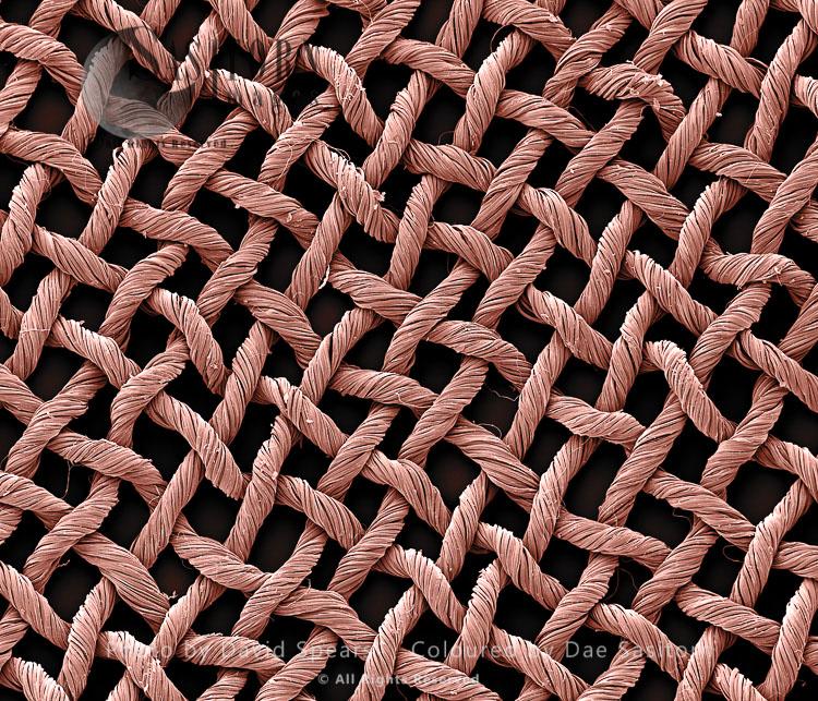 Scanning Electron Micrograph (SEM): Silk Fabric Material