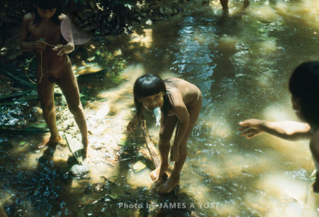 Waorani Indians: When Hands Are Full And You Have No Pockets, Hold The Extra Fish In The Next Best Place, Gabado, 1975, Ecuador