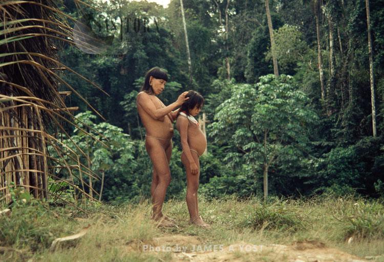 Waorani Indians, Grooming, Rio Cononaco, Ecuador, 1973