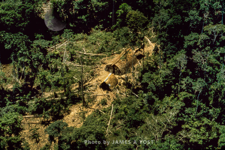Aerial View Of Waorani Indians Settlement In The Rainforest, Near Rio Cononaco, Ecuador, 1973
