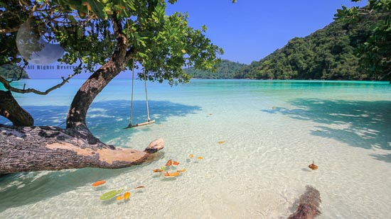 The Paradise Islands, In Andaman Sea, Mu Koh Surin  National Park, 60 Kms. From The Coast Of Phang-Nga Province, Thailand,