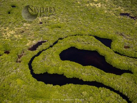Cayo Nube Verde, Island On Roques Archipelago, Caribbean Sea, Venezuela