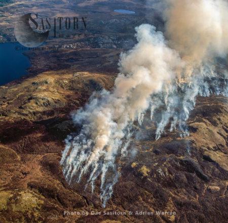 Bush Fire On Isle Of Bute, Highlands, Scotland