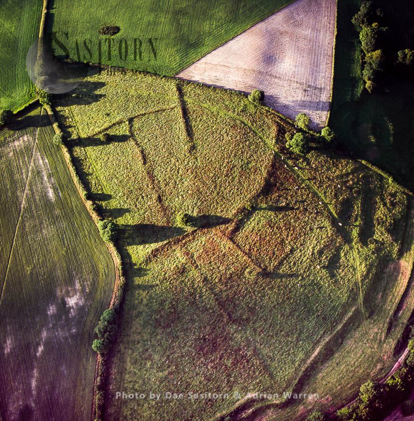 Lynchets, Iron Age Field System, Near Alton Pancras, Dorset, England