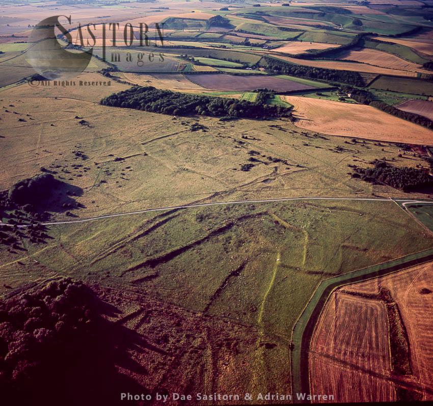 Ridges And Furrows, Fyfield Down, Near Marlborough, Wiltshire, England