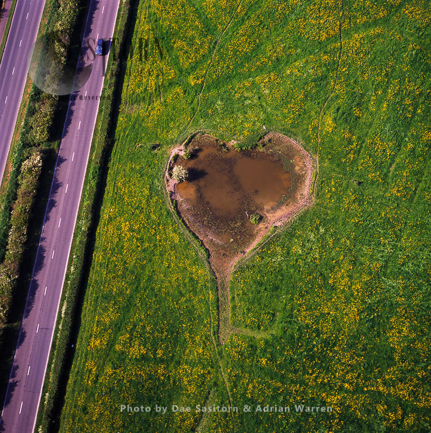Heart Shaped Pool, Somerset