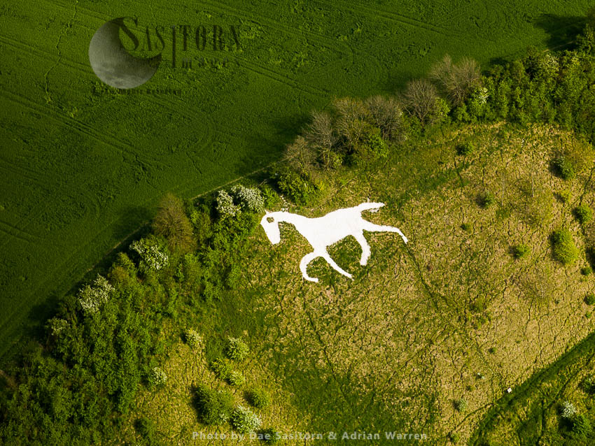 Broad Town White Horse, A Hill Figure Of A White Horse, In The Village Of Broad Town, Wiltshire