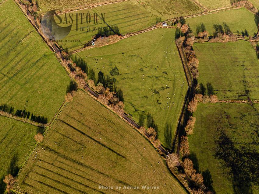 Glastonbury Lake Village, An Iron Age Village, Situated On A Crannog Or Man Made Island In The Somerset Levels, Near Godney, Near Glastonbury