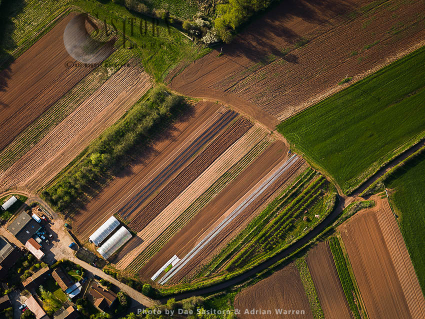 Field Near Stanton Drew, Somerset, England, UK