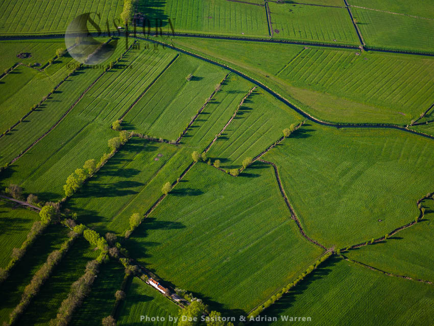 Meare Lake Village, An Iron Age Settlement On The Somerset Levels, Meare, Somerset, England