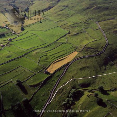 Medieval Fields Near Malham, Yorkshire Dales, Yorkshire