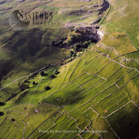 Medieval Fields At Malham Cove, Yorkshire Dales, Yorkshire,