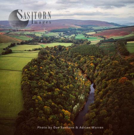 Strid Wood, Bolton Abbey Looking North West, Near Bolton Abbey, North Yorkshire