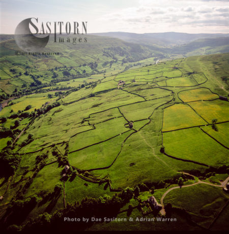 Field Barns And Dry Stone Walls, Medieval Field Layout,  Swaledale With River Swale, North Of Low Row, Yorkshire Dales
