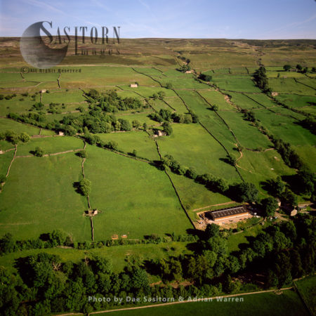 Field Barns And Dry Stone Walls, Medieval Field Layout,  Swaledale With River Swale, South Of Low Row, Yorkshire Dales