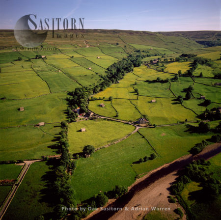 Field Barns And Dry Stone Walls, Medieval Field Layout,  Swaledale With River Swale, Crackpot, Yorkshire Dales