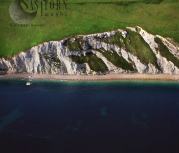 White Cliff Of Dorset Coast Just East Of White Nothe , Dorset