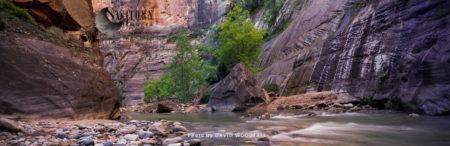 The Narrows, Zion Canyon, Virgin River, Zion National Park, Utah