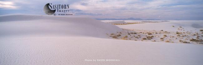Gypsum Dunes Desert, White Sands National Park, Tularosa Basin, New Mexico, USA