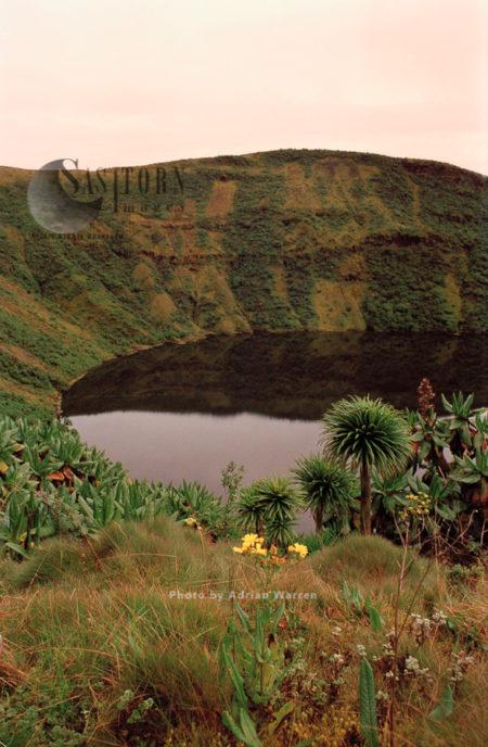 Lake On Summit Of Mount Visoke (Bisoke), Virunga Volcanoes, Rwanda