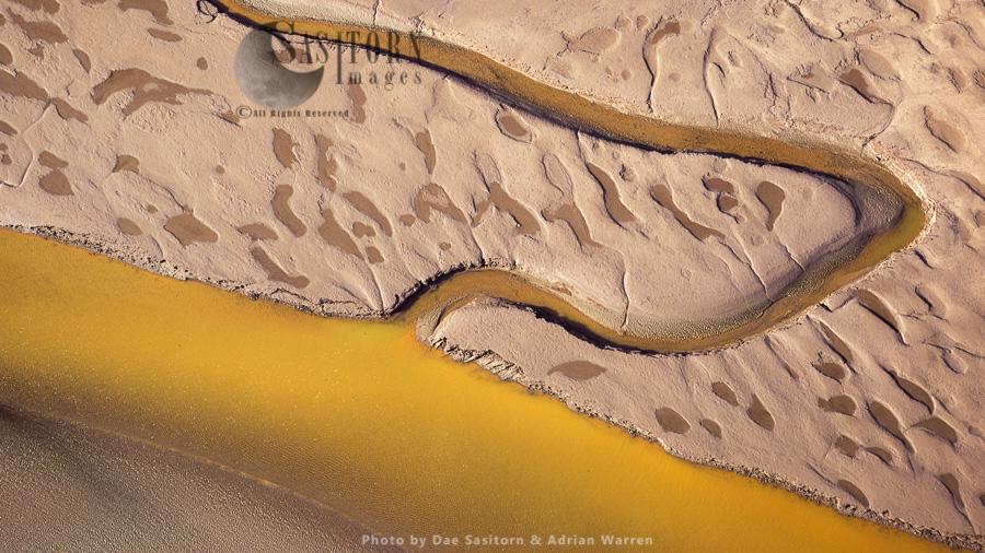 Mudflats & Salt Marshes