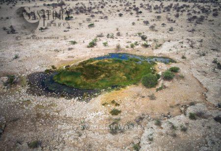 Water Hole, Etosha National Park, Namibia