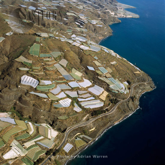 Sea Of Greenhouses, South Of Albunol, East Of Melicena, Looking East Along The Coastline, Southern Spain