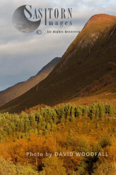 Alladale Wilderness Reserve, Allendale Estate, Highlands, Scotland Highlands, Scotland