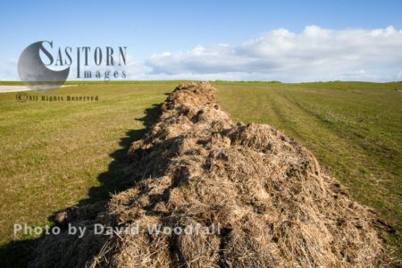 Manure, Mixed With Straw Ready To Spread On Machair, Which Consists Of Sand, To Enhance Its Fertility For Crop Production, Berneray, North Uist, Outer Hebrides