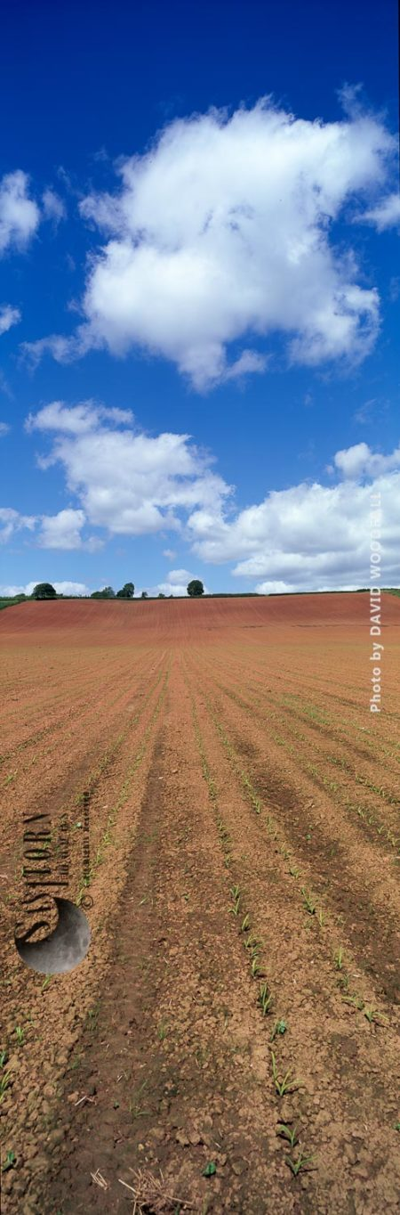 Cultivation Field, England Farming Landscape