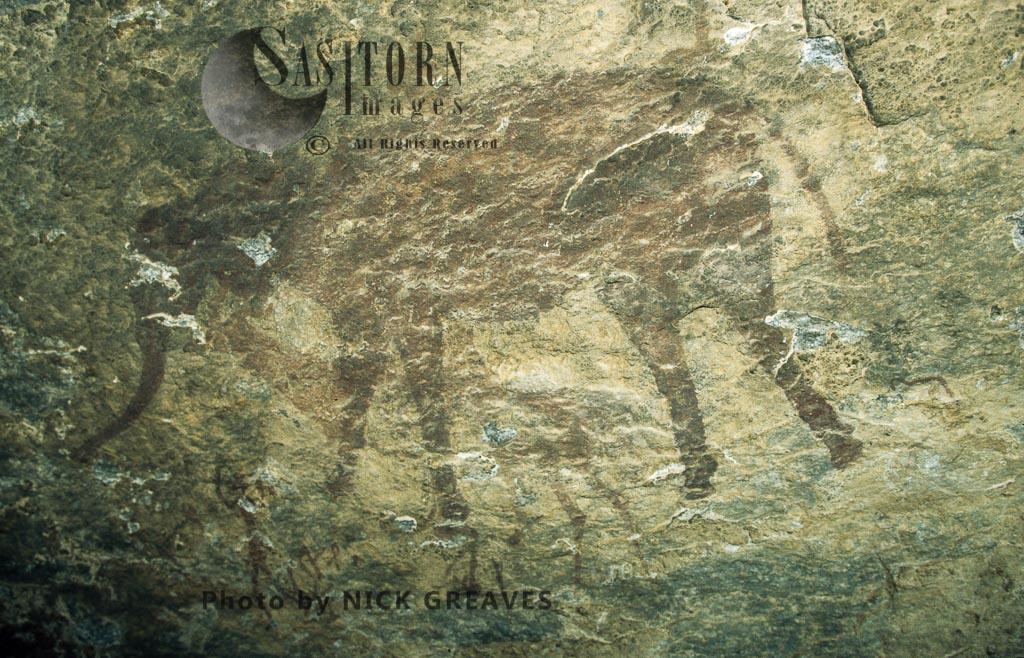 San rock art of African Elephant, Matopos National Park, Zimbabwe