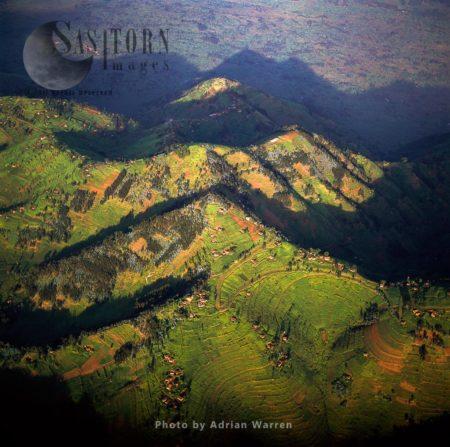 Intensive Hillside Agriculture On Virunga Foothills, Rwanda