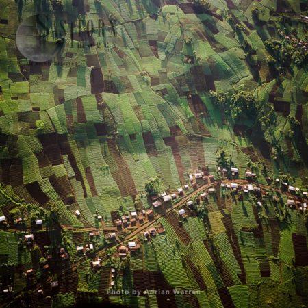 Settlements  And Agriculture Around Virunga Foothills, Rwanda, 2003