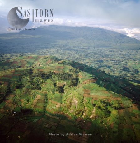 Intensive Hillside Agriculture On Virunga Foothills, Rwanda, 2003
