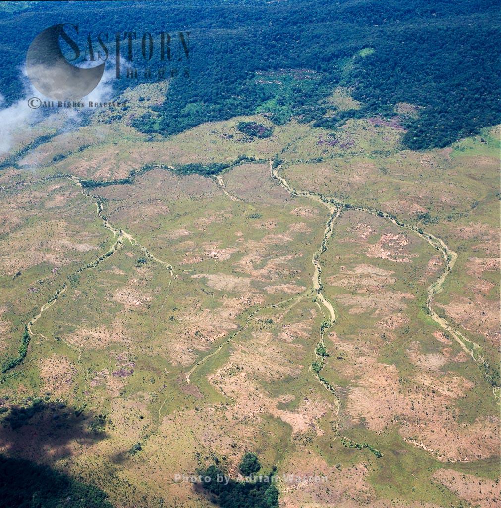 Savannah and stream courses at El Palmar, south of Puerto Ordaz, Venezuela