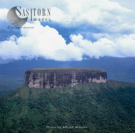 Apauray Tepui, East Of Wonken, Gran Sabana, Canaima National Park, Estado Bolivar, Venezuela