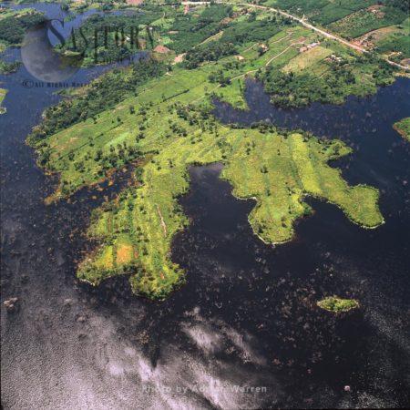 Caroni River Near Puerto Ordaz, Puerto Ordaz, Orinoco, Venezuela
