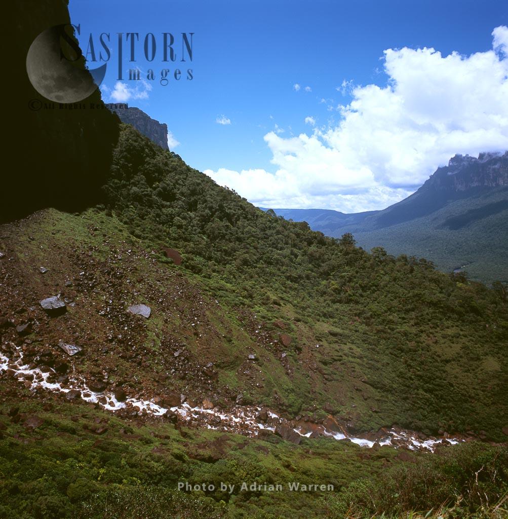 Base of Angel Falls and the Churun gorge, Auyantepui, Canaima National Park,  Venezuela