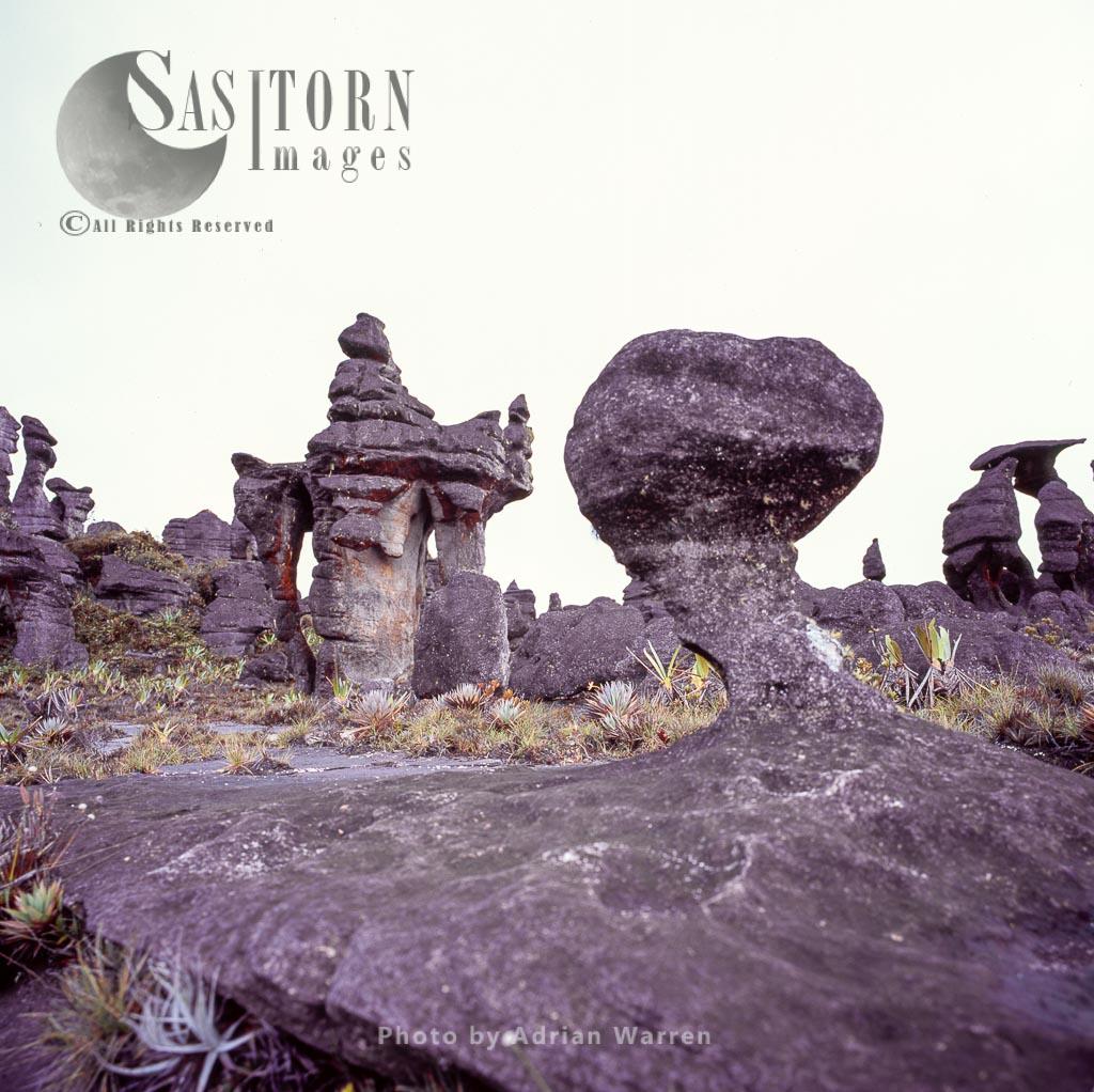 Rock shapes on Kukenan summit near the green lagoon, Tepuis, Canaima National Park, Venezuela