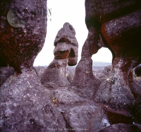 Rock Shapes On Kukenan Summit Near The Green Lagoon, Tepuis, Canaima National Park, Venezuela