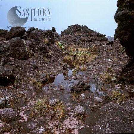 Rock Shapes On Kukenan Summit Near The Green Lagoon, Tepuis, Venezuela