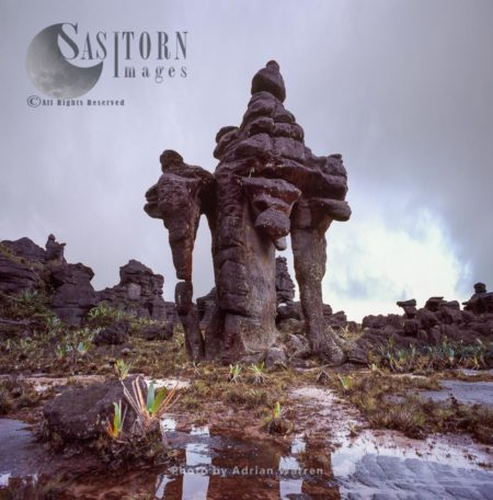 Rock Shapes 'Chinese Pagoda' On Kukenan Summit Near The Green Lagoon, Canaima National Park, Venezuela