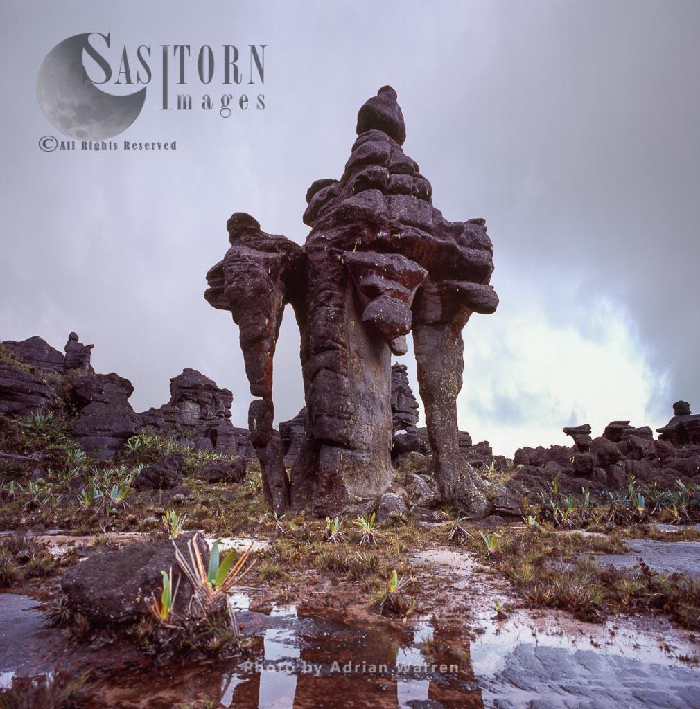 Rock shapes 'Chinese pagoda' on Kukenan summit near the green lagoon, Canaima National Park, Venezuela