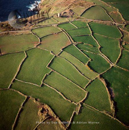 Celtic Fields And Stone Walls  Near Cape Cornwall, Kenidjack, Cornwall