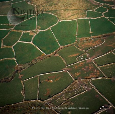 Prehistoric Field System And Stone Walls, East Of Morvah, Cornwall, England