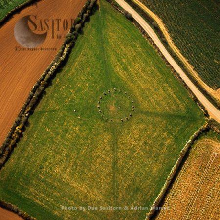 Merry Maidens Stone Circle, Lamorna, Cornwall, England