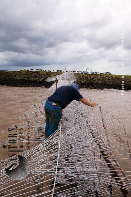 Pucher Fishing On Severn Estuary, England/Wales, UK